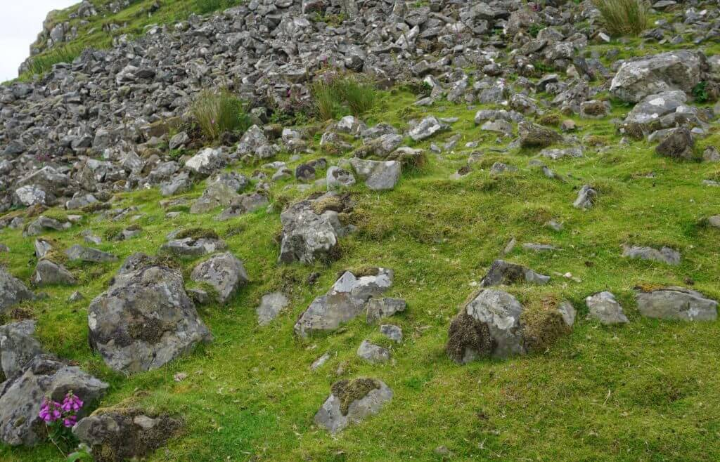 A Scottish hillside covered with rocks